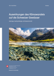 Cover Synthesebericht