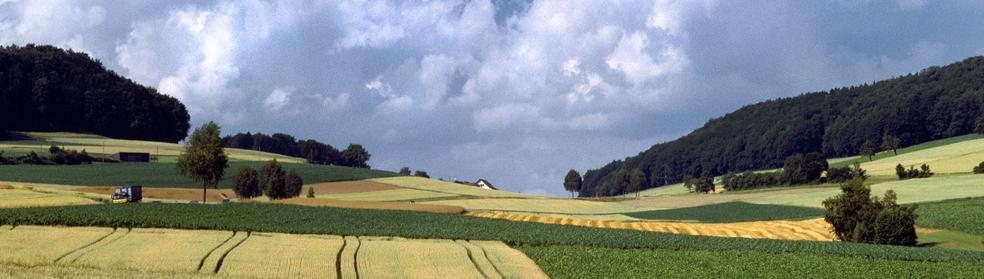 A hilly landscape in the Swiss Central Plateau with arable fields and meadows in the foreground. The area has isolated trees, hedges and woodlands. On the horizon, there are cumulus clouds in a blue sky.